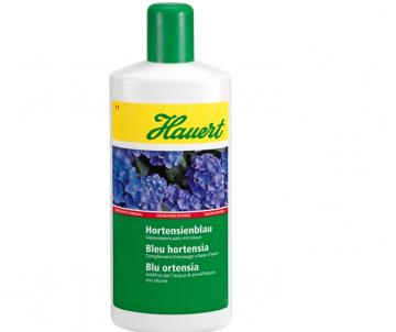 Bleu pour hortensia...