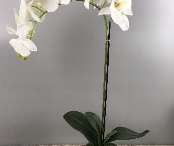 Orchidée artificielle, 1...