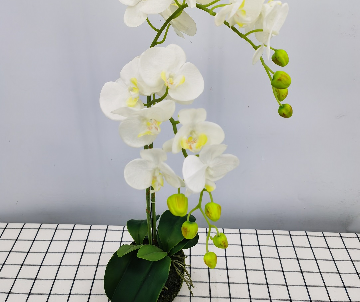 Orchidée artificielle, 2...