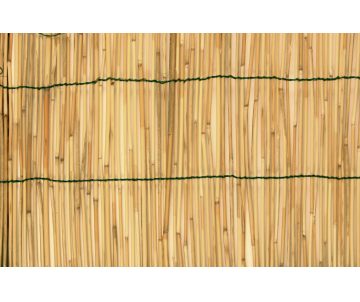 Canisse bambou 100x300cm