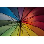 Parasols, Tentes & Gazebos