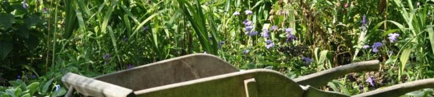 Culture & Jardinage
