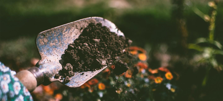 Tout pour votre jardin